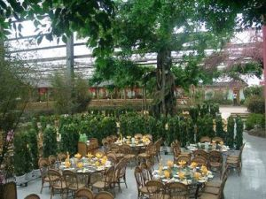Special Tourism Greenhouse Supplier in China