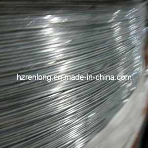 Wholesale High Quality Galvanized Wire /Steel Wire (0.6mm-6.0mm)