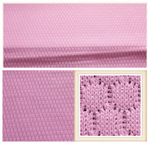 Polyester Mesh Fabric/Wholesale Mesh Fabric/Tricot Mesh Fabric pictures & photos