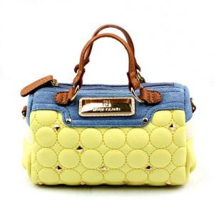 2013 Newest Fashion Lady Handbag (E23115)
