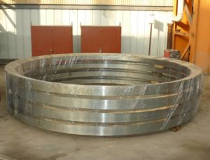 Wind Power in Forging Flange pictures & photos