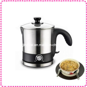 Multifunctional Stainless Steel Electric Noodle Cooker (KT-11)