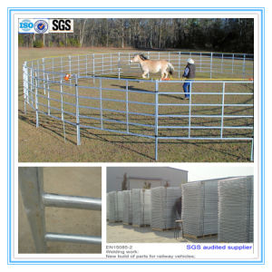 Galvanized Horse Steel Fence