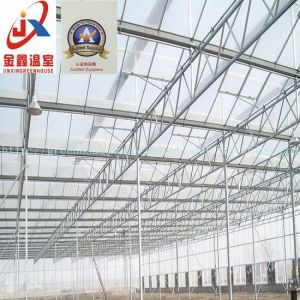 Steel Structure Constructing Agricultural Greenhouse pictures & photos