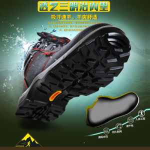 Safety Footwear Manufacture pictures & photos