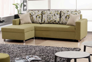 Sofa Set with Storage and Pull out Bed pictures & photos