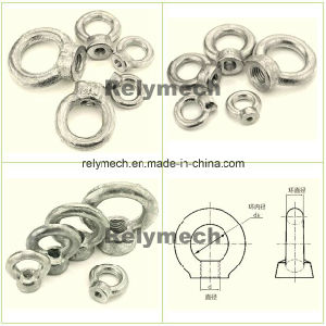 Stainless Steel/Forged Galvanized Eyenut/Eye Nut pictures & photos
