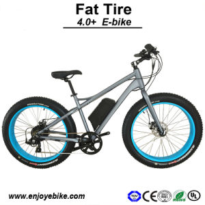 48V500W Powerful All Terrians Suitable Beach Cruiser Electric Bike Electric Bicycle Motorcycle E-Bicycle (PE-TDE12Z)