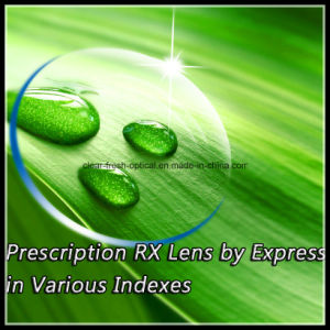 Prescription Rx Lens by Express in Various Indexes