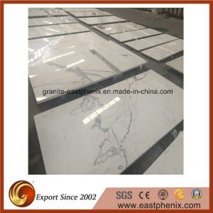 Calacatta White Marble Stone Tile for Wall Tile