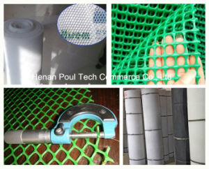 Poultry Farm Chicken Flat Mesh Poultry Equipment pictures & photos