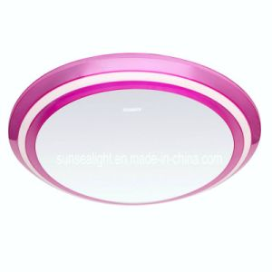 LED Ceiling Light Ceiling Lamp Room Lamp (SSX-SY420-18W)