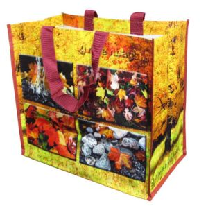 PP Woven Shopping Promotional Bag