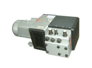 Dry Vane Vacuum Pumps for Wood-Working Machine pictures & photos