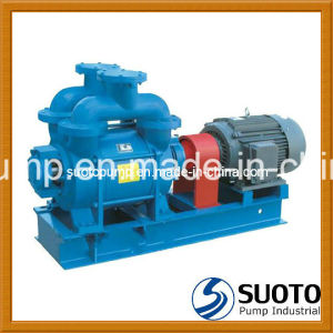 Liquid (Water) Ring Vacuum Pump (2BV2 060 061 070 071, 2BV5 110 111 121 131 161, 2BV6 110 111, 121 131 161) pictures & photos