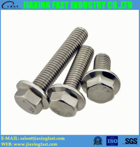 Hexagonal Head Flange Bolt / Hex Flange Bolt / Hex Head Flange Bolt/ Hexagon Head Flange Bolt