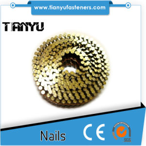 15 Degree Bright Screw Shank Wire Coil Nails pictures & photos
