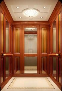 Good Price Passenger Elevator pictures & photos