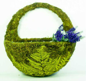 Moss Wall Hanging Basket for Outdoor
