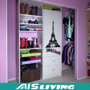Colorful Elegant Wardrobe Closet in Simple Style (AIS-W73)