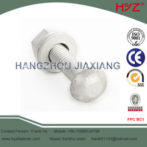 High Strength Tc Bolts with Round Head pictures & photos