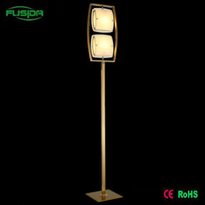 Modern Graceful Floor Lamp With Two Adjustable Glass Shade