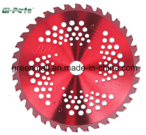 Tct Blade for Brush Cutter (GP050.01.006) pictures & photos