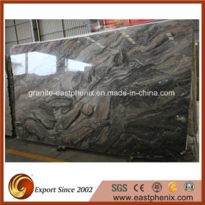 Imported Black Mable Slab for Tombstone/Wall Tile