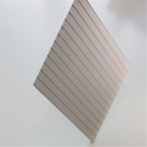 8mm Twin Wall PC Hollow Sheet Polycarbonate Sheet