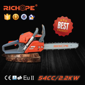 Professional Chain Saw (CS5460) pictures & photos