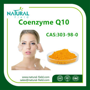 Anti-Oxidation Coenzyme Q10 Powder for Skin Care