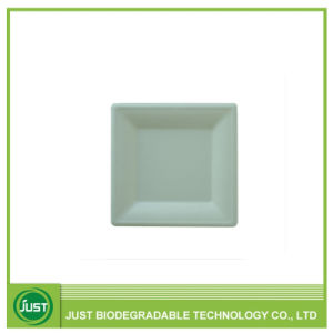 Disposable Compostable Paper Pulp Bagasse Tableware Square Plate 6\u2032\u2032  sc 1 st  Made-in-China.com & China Disposable Compostable Paper Pulp Bagasse Tableware Square ...