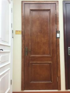 Solid Wood Door Ds-061 pictures & photos