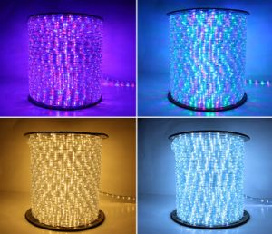Two Wires Warm White 30LEDs 2W/M LED Rope Light/Outdoor Light/LED Strip Light/Neon Light/Christmas Light/Holiday Light/Hotel Light/Bar Light Round LED Strip pictures & photos