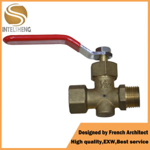 Good Professional and Quality Plunger Valve pictures & photos