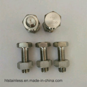 DIN931 Hastelloy 2.4600 B3 N10675 Hex Bolt Nut and Washer pictures & photos