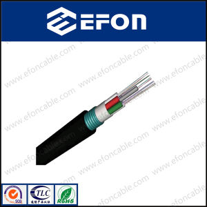 Outdoor G652D 12core Fiber Optic Cable (GYTS)
