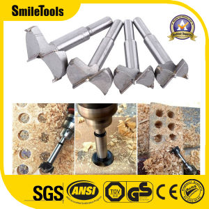 17 PCS Carbon High Speed Steel Wood Working Hole Cutter Titanium Coated Wood Boring Hole Drilling
