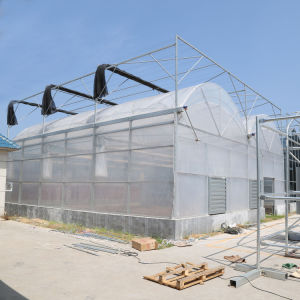 Film Greenhouses Plastic for Agriculture with Cooling Pad