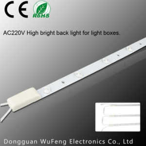 AV220V High Bright Back Light for Light Boxes