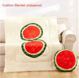 Fruit Printing Cushion Blanket pictures & photos