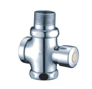 Hand Press Type Flush Valve in Toilet (A-01) pictures & photos