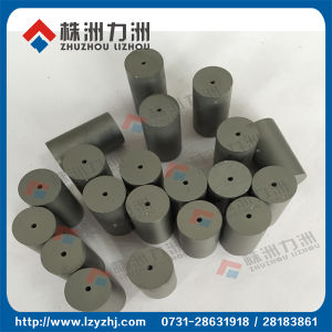 Tungsten Carbide Extrusion Dies with CIP Production