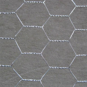 Galvanized Hexagonal Wire Mesh (Chicken Mesh) pictures & photos