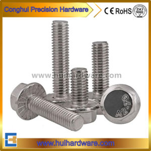 DIN6921 Stainless Steel Large Hexagon Flange Bolt pictures & photos