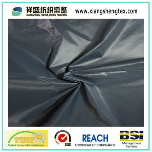Ultrathin Calendering Nylon Taffeta Fabric for Down Garment pictures & photos