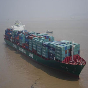 Shanghai Sea Shipping to Calcutta, India pictures & photos