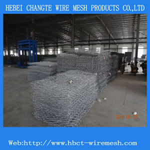 Electric Galvaized Stone Gabion (6*8 8*10) pictures & photos