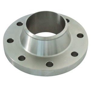 316 Stainless Steel Welding Neck Flange (POY-006)