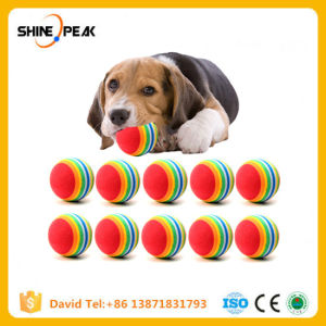 China 10pclot Mini Small Dog Toys For Pets Dogs Chew Ball Puppy Dog